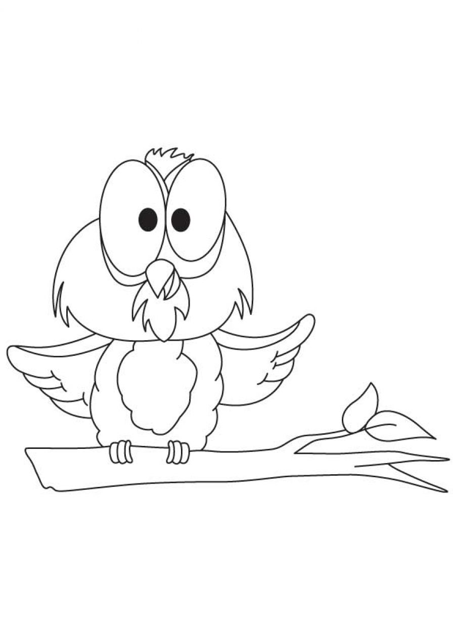 Baby Owl Coloring Pages Printable