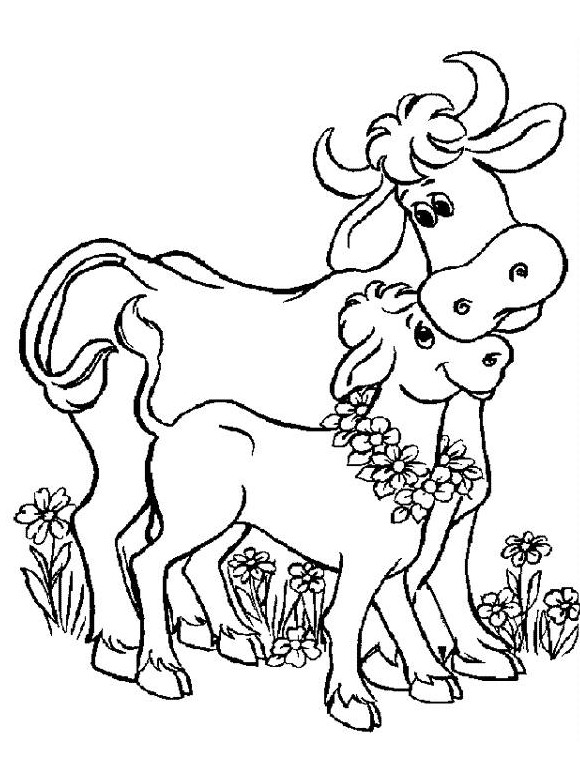Cute Cow Coloring Pages Free Printable