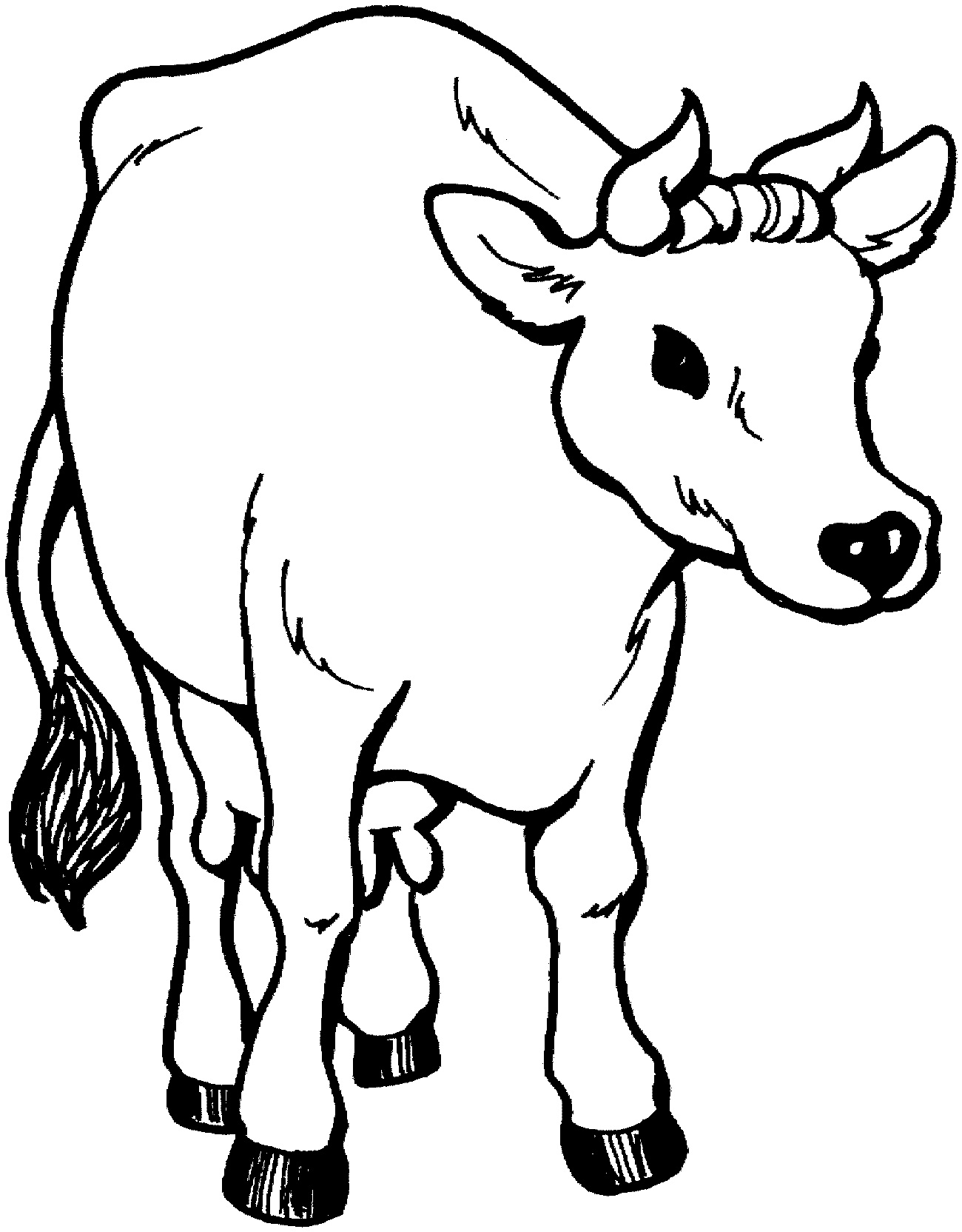 Cow Coloring Pages for Toddlers Printable