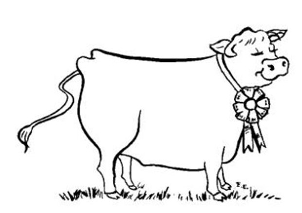 Cute Cow Coloring Pages for Print