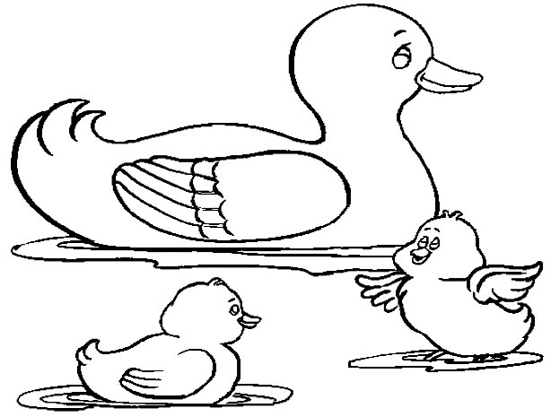 Free Duck Coloring Sheets
