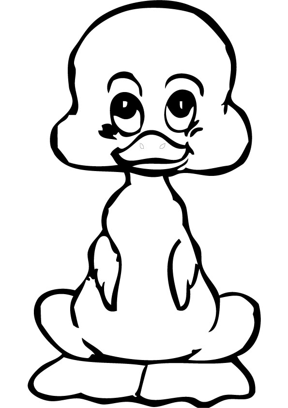 Duck Coloring Pages 360coloringpages