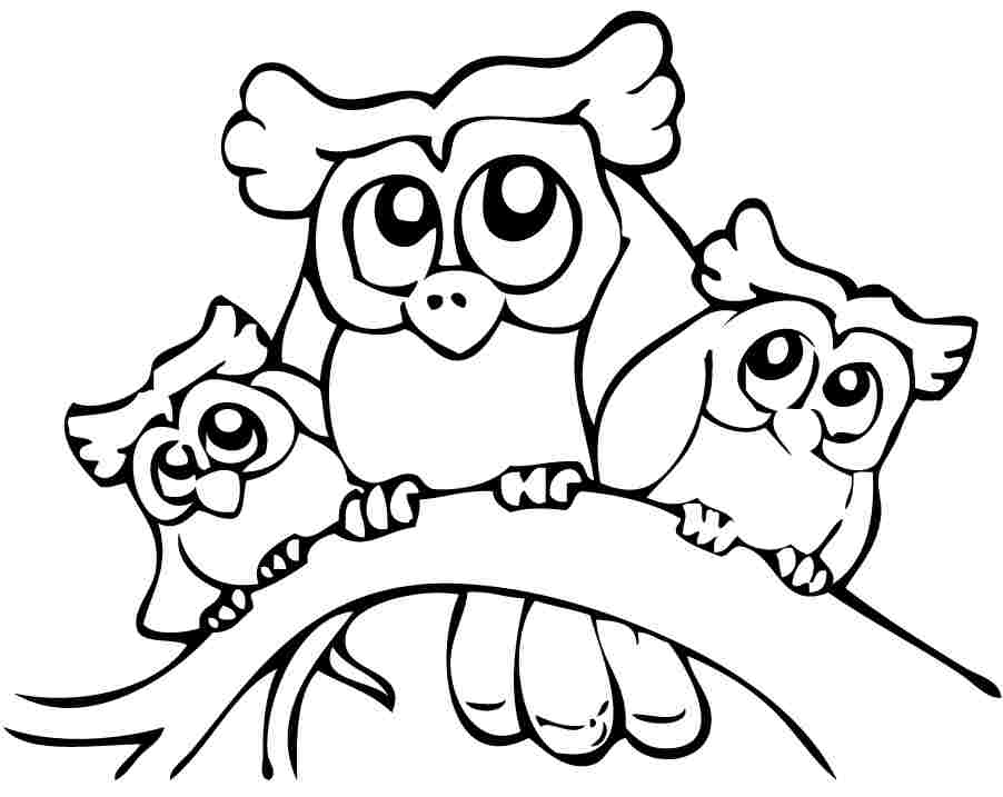 Cute Owl Coloring Pages Preschool
