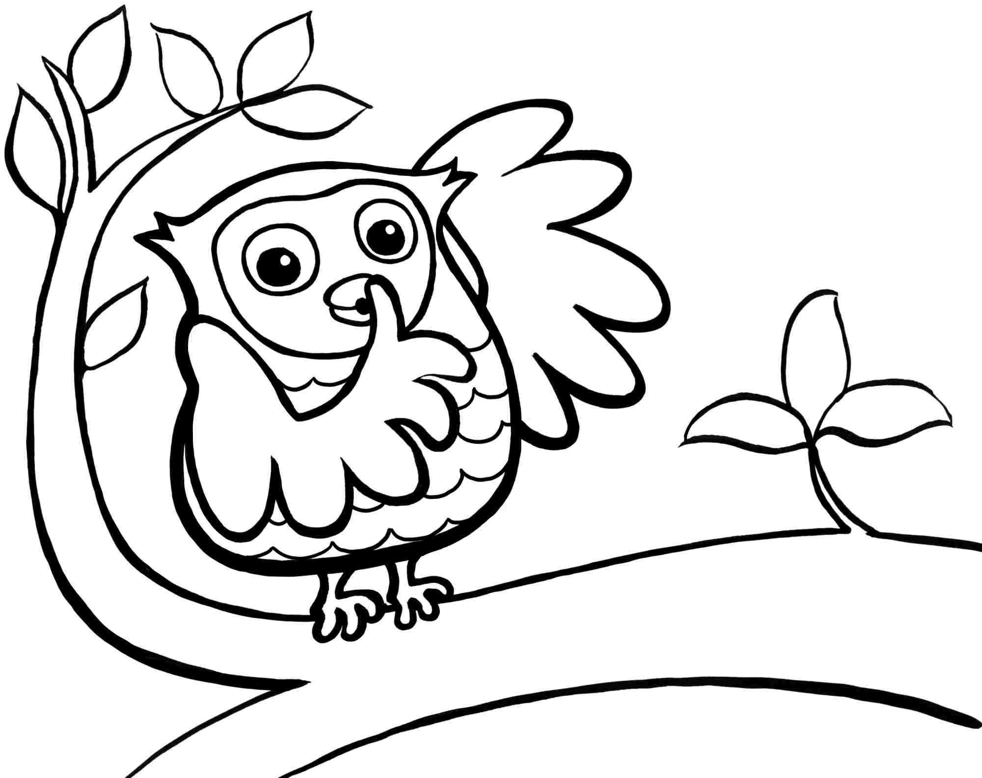 free Owl Coloring Pages for Toddlers