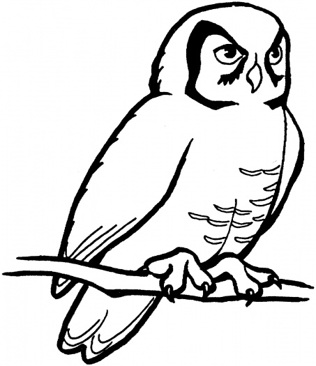 Owl Coloring Sheets Printable