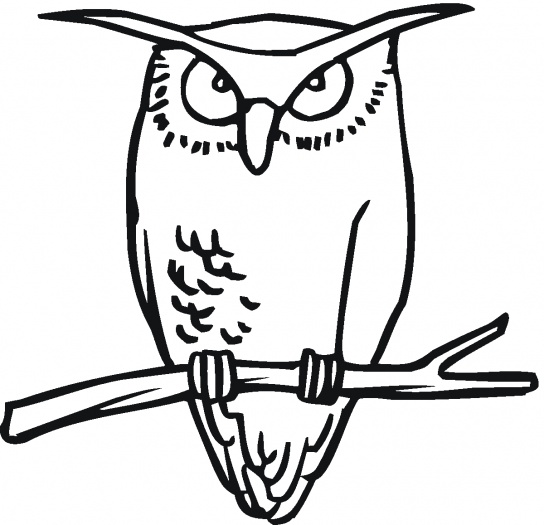 Owl Coloring Sheets Free