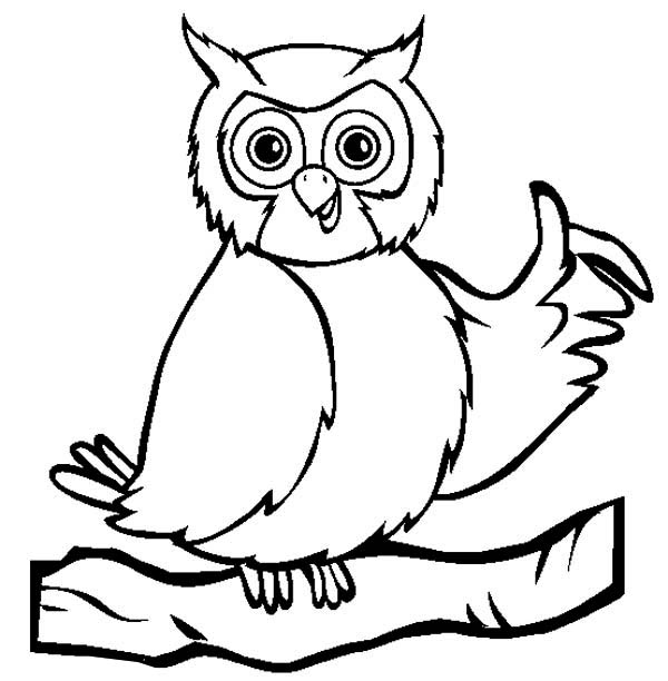 Owl Coloring Sheets Preschool Print