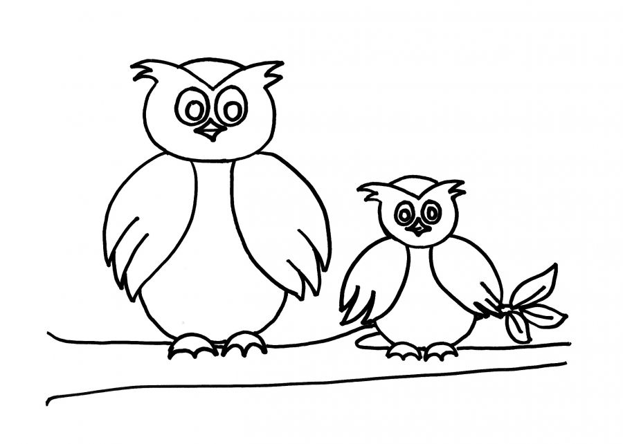 Owl Coloring Sheets for Preschool