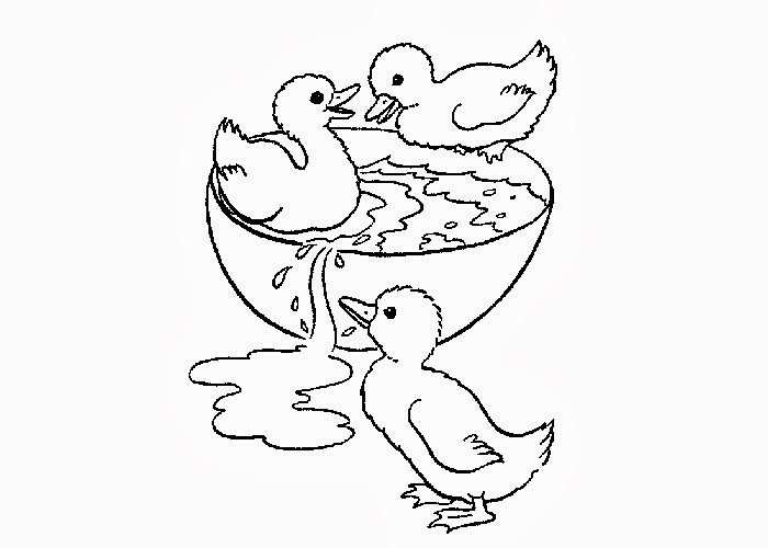 Duck Coloring Sheets for Print