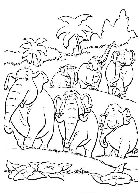 Printable Elephant Coloring Sheets for Free