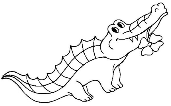 Printable Alligator Coloring Pages for Kids