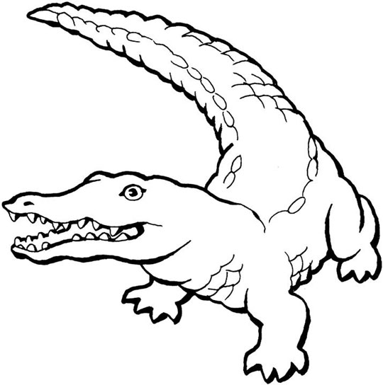 Printable Alligator Coloring Sheets