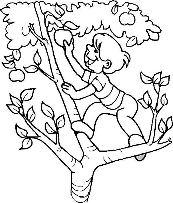 Apple Coloring Pages for Preschoolers | 360ColoringPages