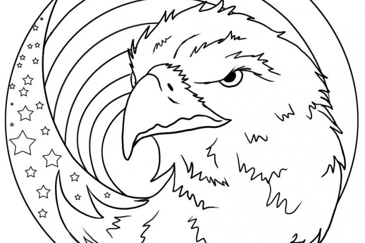 bald eagle coloring pages for kids printable