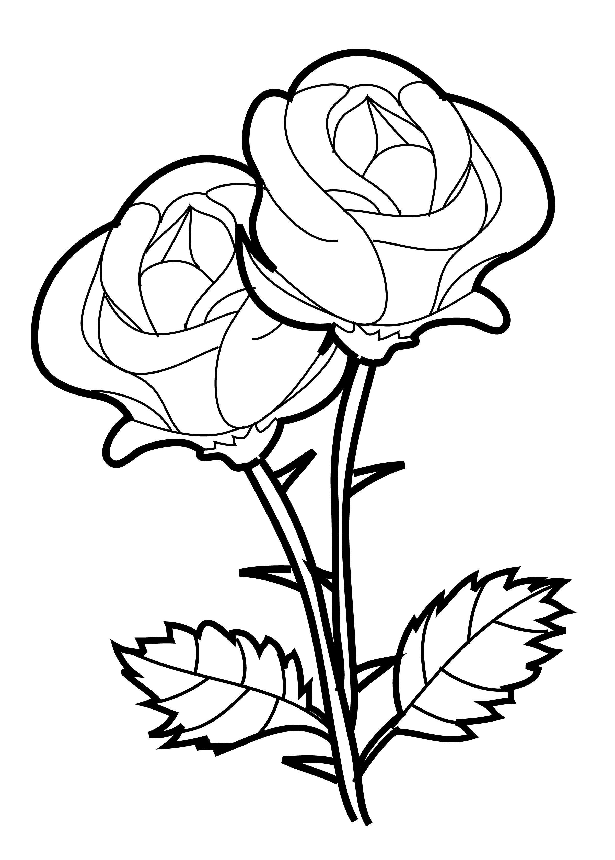 Rose coloring pages 360coloringpages for Coloring pages roses