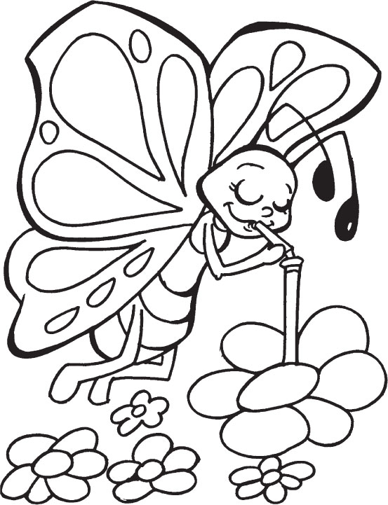 Printable Butterfly Coloring Pages Free