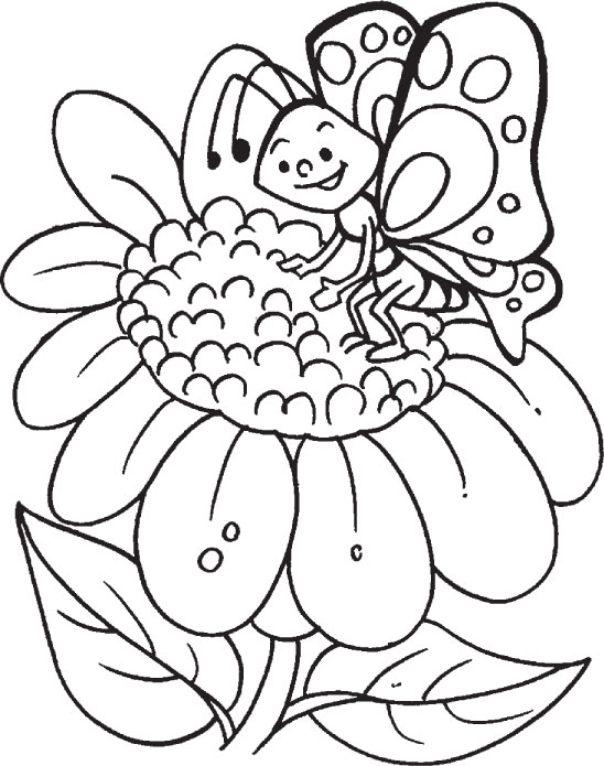 Butterfly Coloring Sheets to Print
