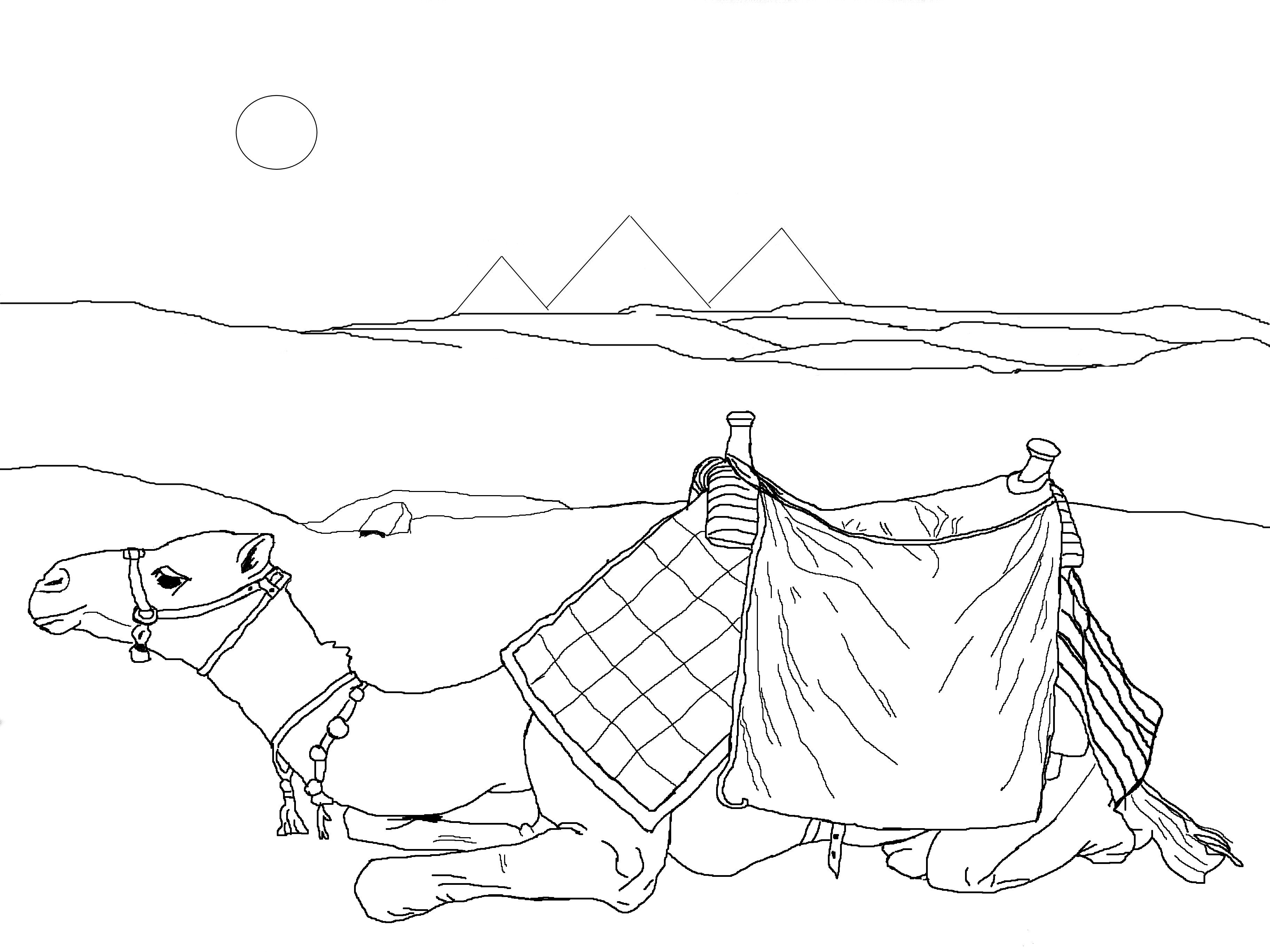 Free Camel Coloring Sheets for Kids