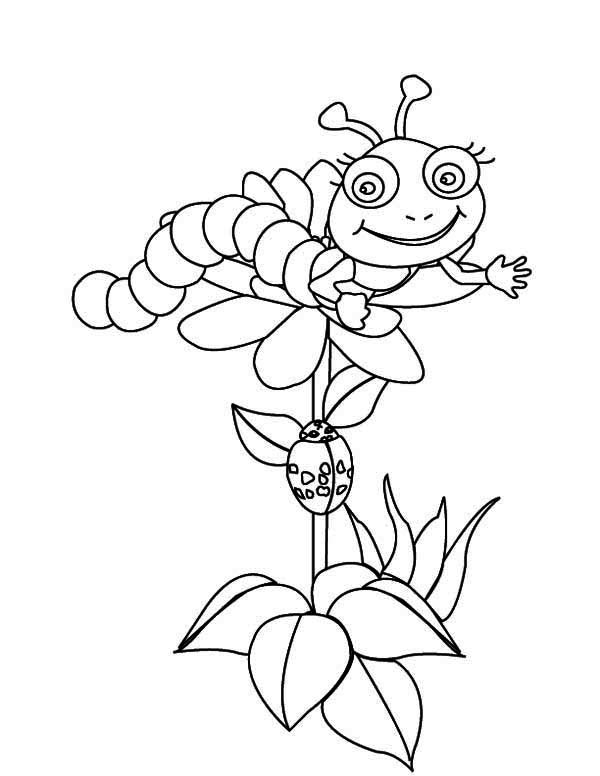 Caterpillar Coloring Pictures