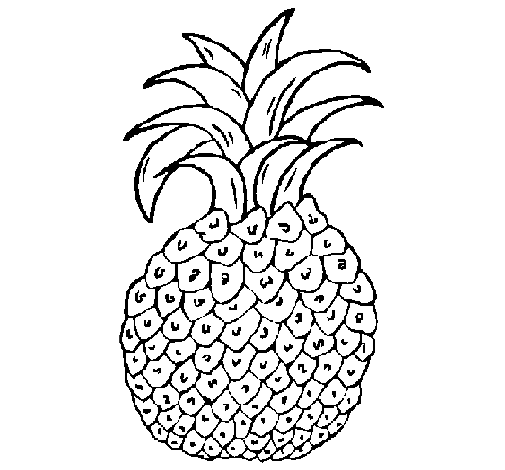 Pineapple Coloring Picture