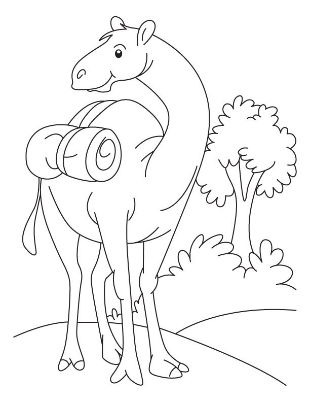 Cute Camel Coloring Pages for Kids