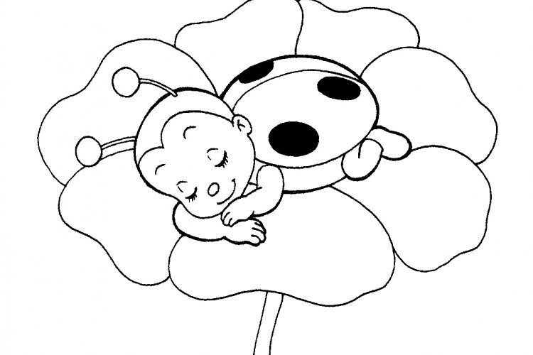 Inventive image pertaining to ladybug printable coloring pages