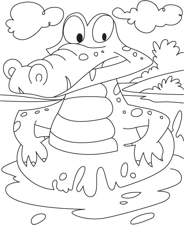 Alligator Coloring Sheets Free