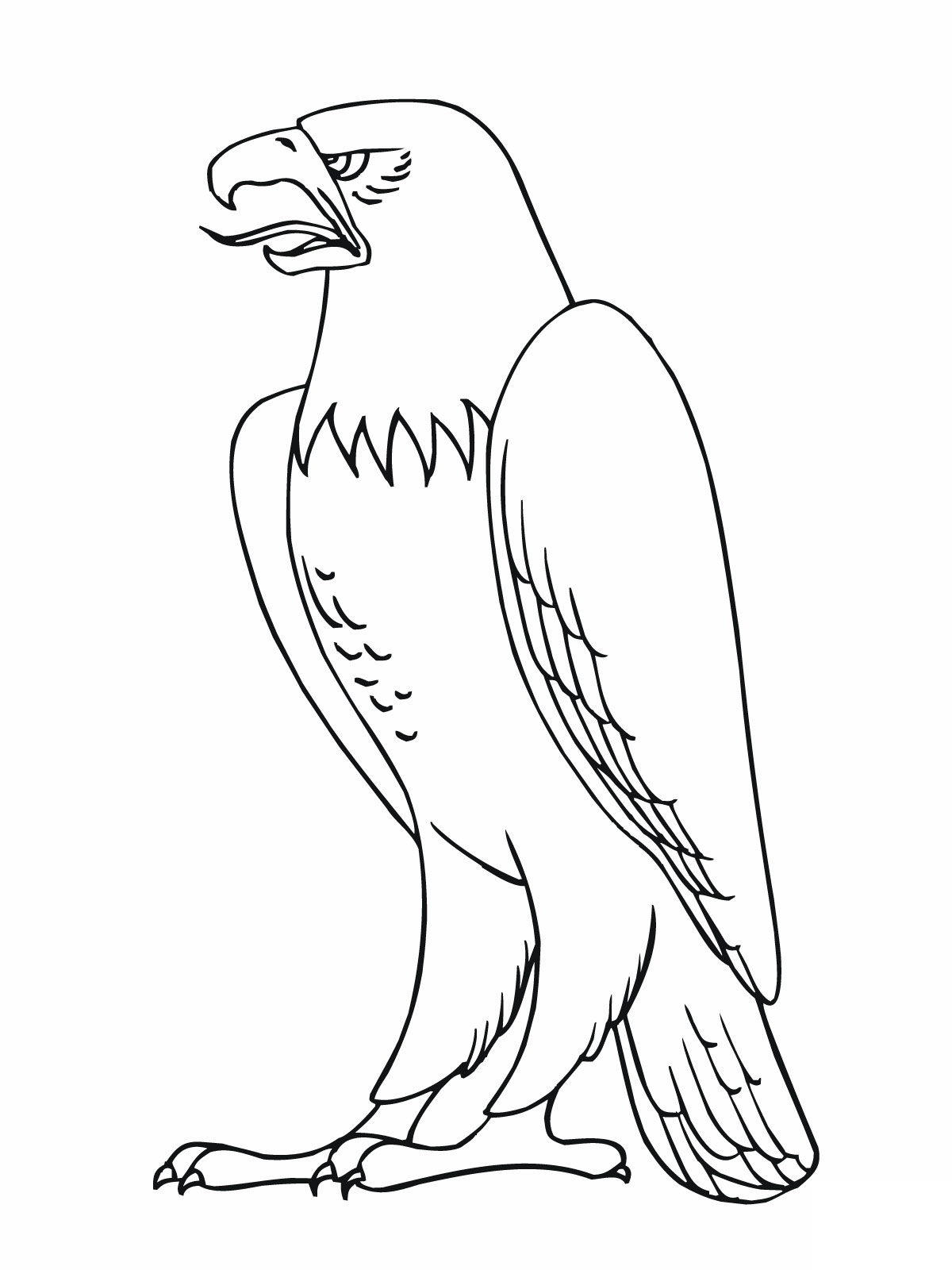 Free Printable Coloring Pages Bald Eagle