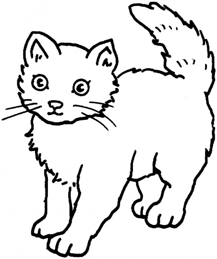 Free Kitty Cat Coloring Page