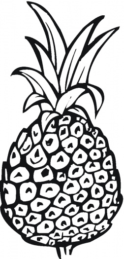 Pineapple Pictures to Color for Free