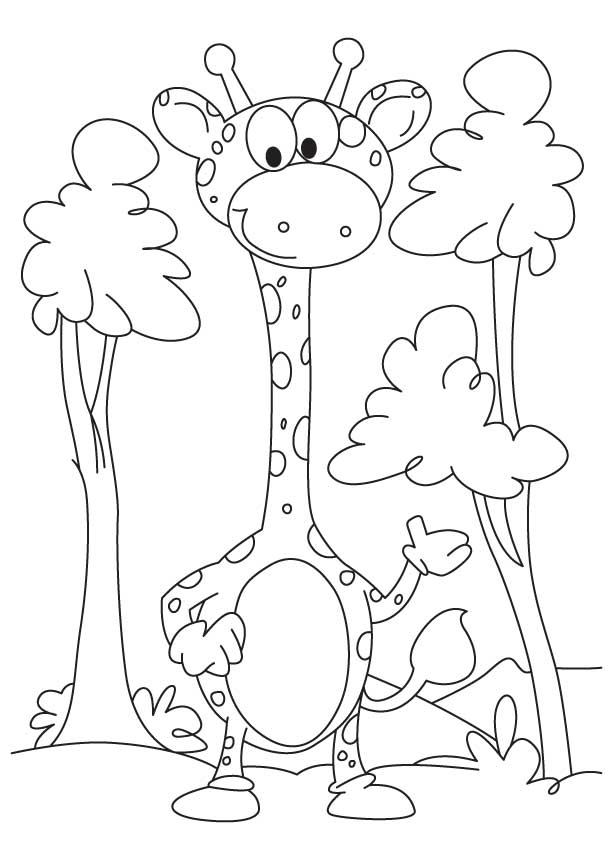 Free Giraffe Coloring Pages to Print
