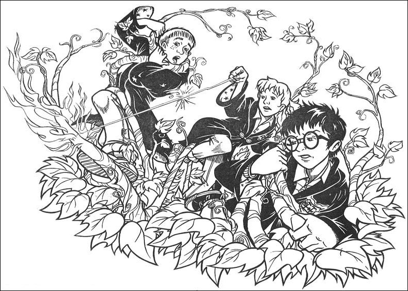 Harry Potter Coloring Sheets Kids