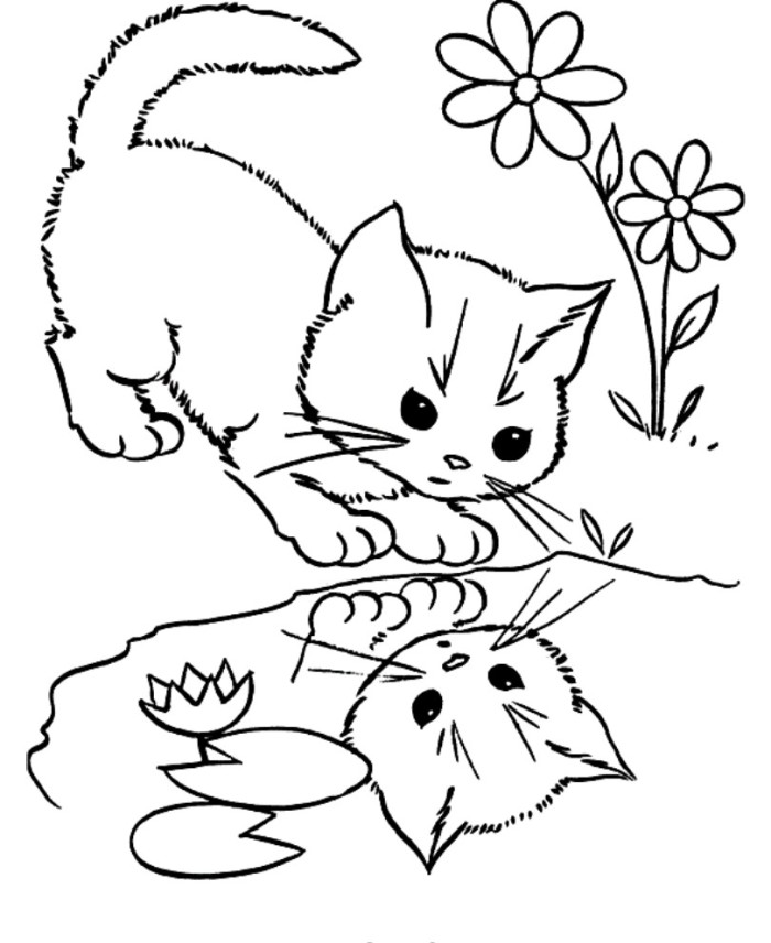 Printable Kitten Cat Coloring Pages