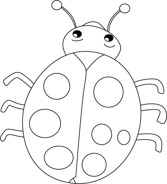 Ladybug Coloring Pages for Preschoolers