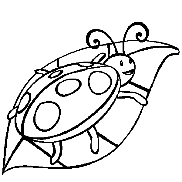 Ladybug Coloring Pages | 360ColoringPages