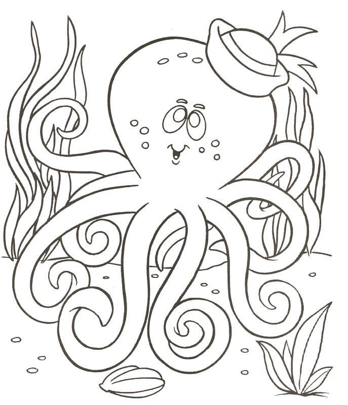 Octopus Coloring Sheets