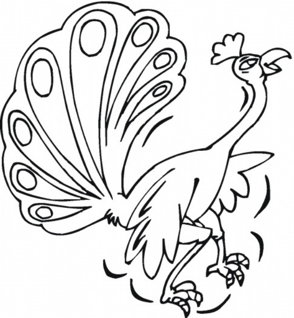 Peacock Coloring Sheets