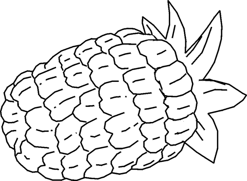 Pineapple to Color