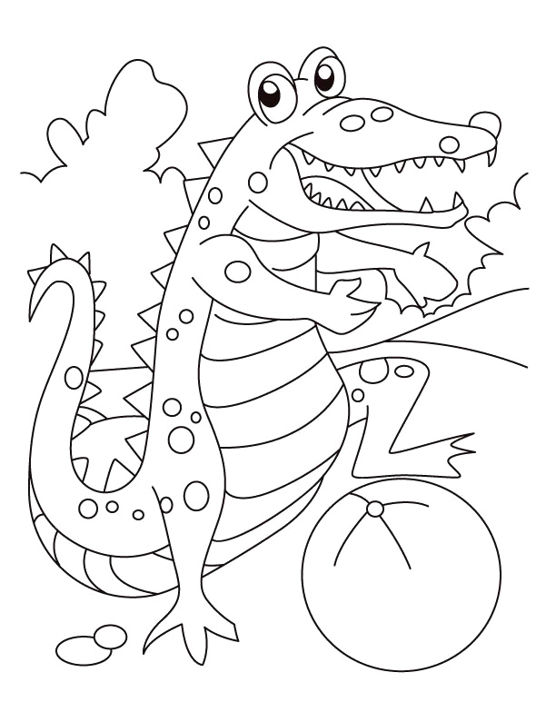 Alligator Coloring Sheets Print Free