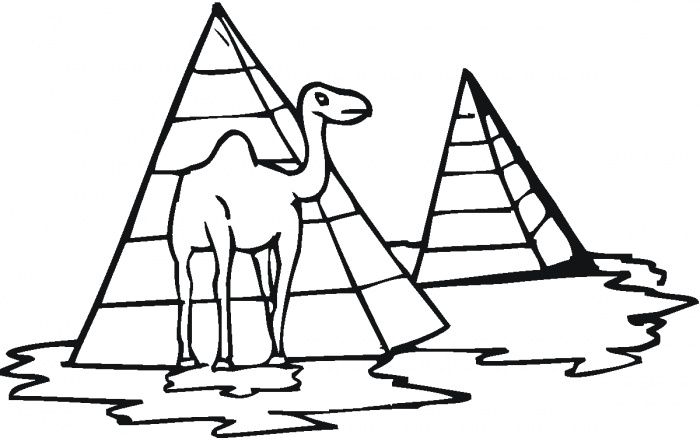 Printable Camel Coloring Pages for Free