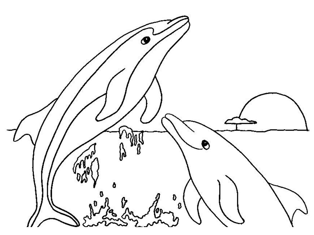 Printable Dolphin Coloring Page for Kids