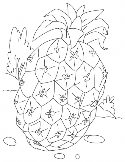 Pineapple Coloring Pages for Kids