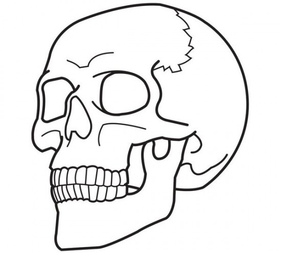 Free Printable Skull Coloring Sheets for Kids