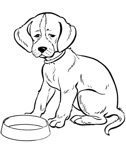 Realistic Puppy Coloring Page