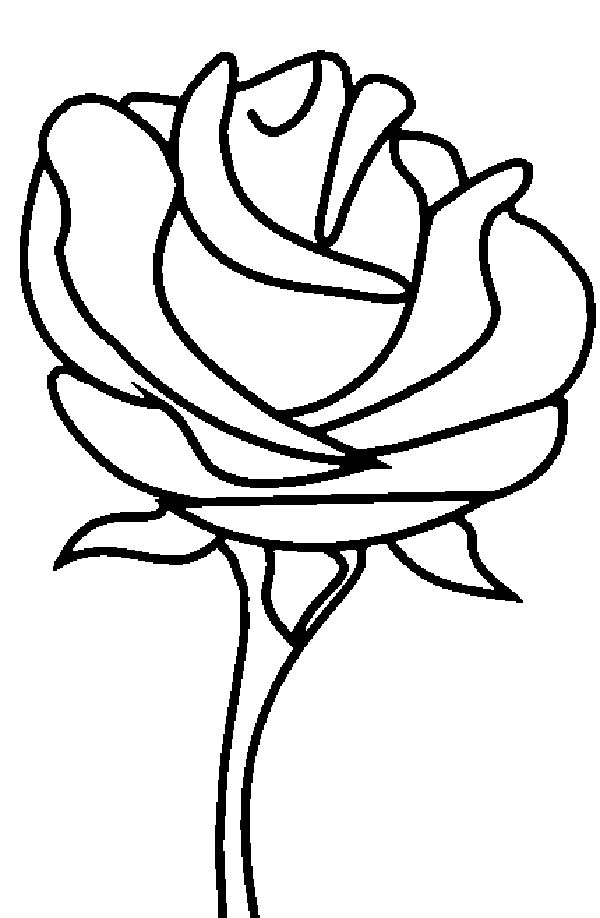 Rose Coloring Pictures
