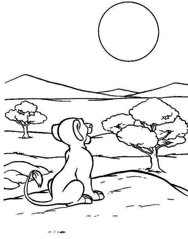 Simba Coloring Sheets for Free