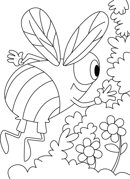 Bee Coloring Pages Printable Free