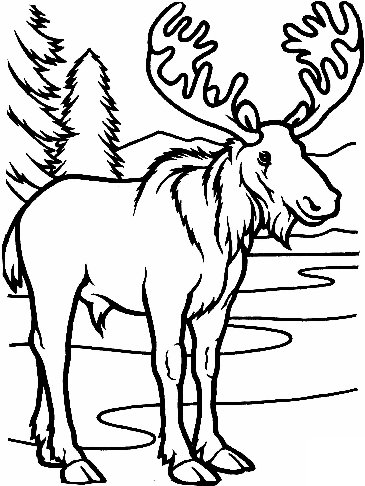 Cute moose coloring pages ~ Moose Coloring Pages | 360ColoringPages