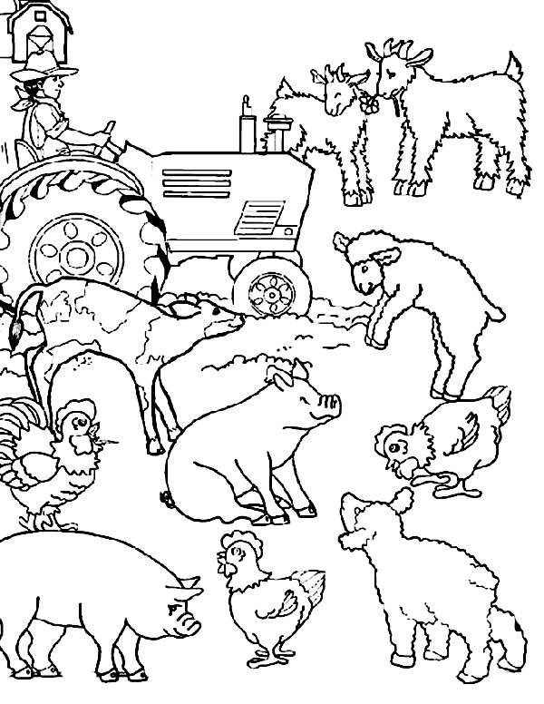 Cartoon Farm Animal Coloring Page