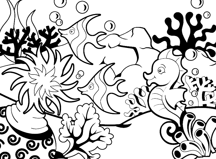 Coloring Pages of Seahorse